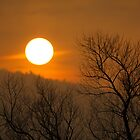 Foggy Sunset by Delmas Lehman