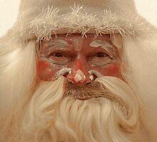 Santa  Claus by mrivserg