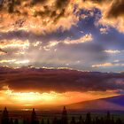 Maui Sunset  - 1/8/13 by NealStudios