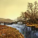 Slater Bridge - Little Langdale by David Lewins