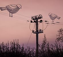 'Birds on a wire' by JohnKnightPhoto