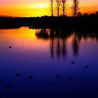 Abberton Twilight by newbeltane