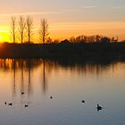 Abberton Sunset by newbeltane