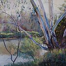 Redgums by Lynda Robinson
