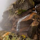 Falling into the Fog by Cameron B