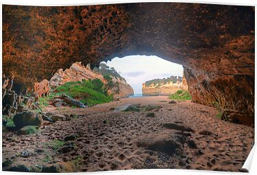 Inside Loch Ard Gorge. by Warren  Patten