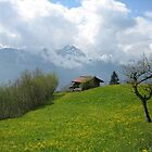 Stunning Switzerland - Spring by Mary-Elizabeth Kadlub