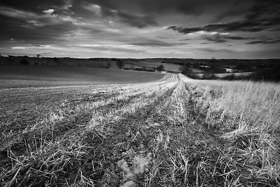 Nightlite, Meander in the Mud BW by Andy Freer