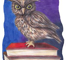 Archimedes the Owl by sarahpittman