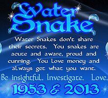 Chinese Zodiac, water snake, 1953, 2013, born by Valxart