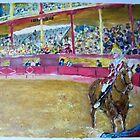 Bull fighting by rogerio