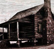 Rural Life by Lisa Taylor