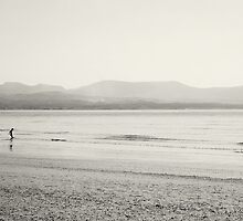 Snowdonia from Anglesey by seanusmaximus
