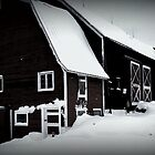 old barn by laura01888