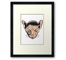 Hairless Cat Denial Framed Print