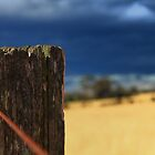 Old Fence Post by Izgab