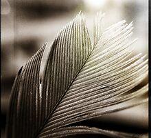 Feather Tip by KBritt