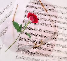 Music is like a Red Red Rose by AnnDixon