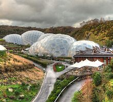 Winter at Eden by Rob Hawkins