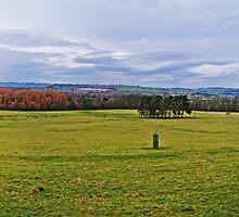 Harewood  by CreatedPhoto