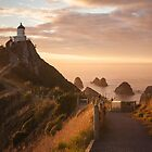 Sunrise at Nugget Point, Otago, New Zealand by Linda and Colin McKie