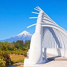 Te Rewa Rewa Bridge, Taranaki, New Zealand by Linda and Colin McKie