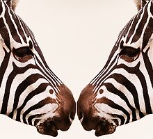Zebra Love by Yanieck