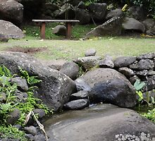 Quiet Moment at the Garden of Eden by KingstonPrints