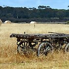 Old Wagon, Kangaroo Island, South Australia by Martin Lom