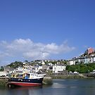 Brixham Harbour, Devon by lezvee