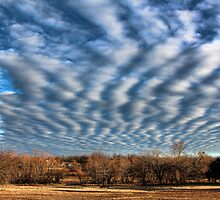 Cool Clouds Over The Neighborhood by Carolyn  Fletcher