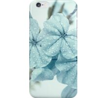 Plumbago is the language that my garden speaks in summer... iPhone Case/Skin