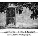 """Door In Adobe Wall - Cerrillos - New Mexico"" by Bob Adams"