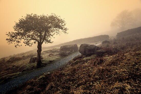 Misty Sunrise - Cumbria by David Lewins