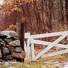 Old Gate by Linda Makiej