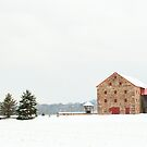 A very unique barn by Penny Rinker
