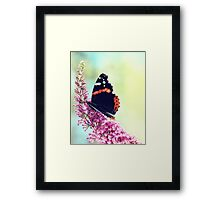 Double Butterfly Framed Print
