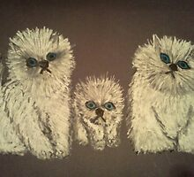 THREE LITTLE KITTENS by NEIL STUART COFFEY