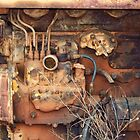 Rusty Farm Tractor Motor by James Brotherton