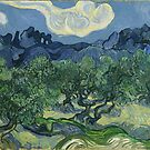 Olive trees of  Vincent Van Gogh by nadil