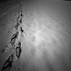 Footsteps. by AmyAmata
