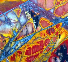 Dragonfly Wing (Cherry Creek Jasper) by Stephanie Bateman-Graham