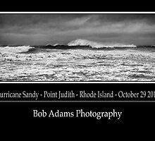 """Hurricane Sandy"" by Bob Adams"