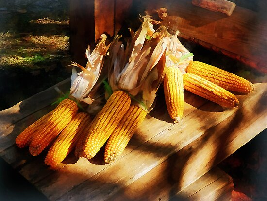 Vegetable - Corn on the Cob at Outdoor Market by Susan Savad