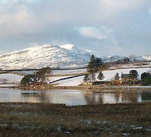 Trawsfynydd Lake Reflection, North Wales UK .... by AnnDixon