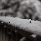 Balcony Snow by Sharlene Rens