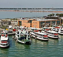 Port of Venice by Tom Gomez