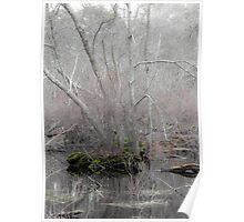 A Subtle Forest Poster