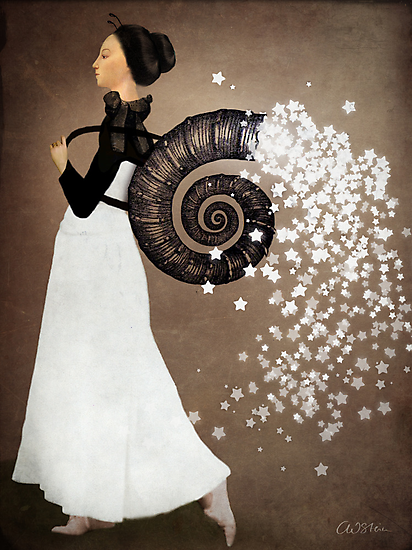 The Star Fairy by Catrin Welz-Stein
