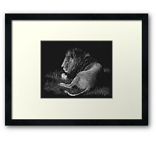 Old King - lion Framed Print